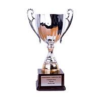 Laureat nagrody Agroliga 2002