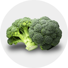 Brokuł