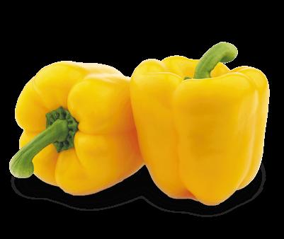 Papryka zółta